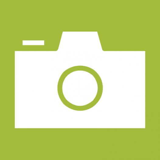 Jour 313: Photojournalism