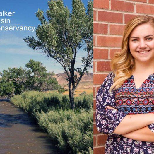 Caroline Ackerman, an intern at Walker Basin